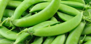 sugar_snap_peas2